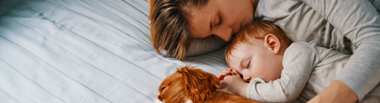 Mom, baby, and a brown dog sleeping together on white bedding.